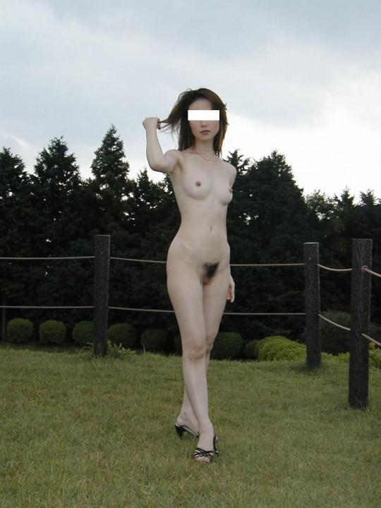eroangle3146_02